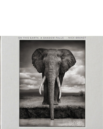 Nick Brandt. On This Earth, A Shadow Falls