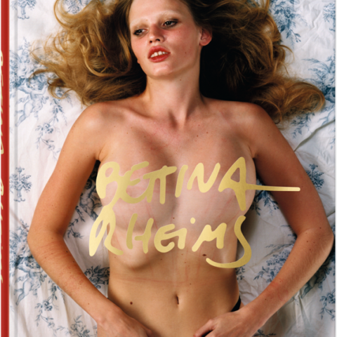 Bettina rheims bettina rheims book album folio for Bettina rheims serge bramly chambre close