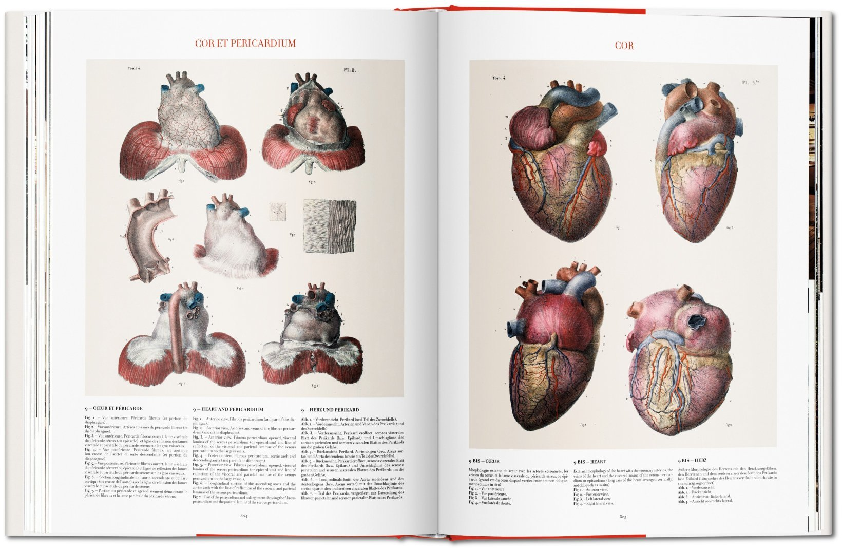 Bourgery Atlas Of Human Anatomy And Surgery Henri Sick Jean Marie