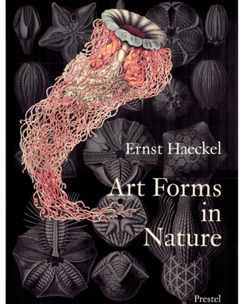 Art Forms in Nature. The Prints of Ernst Haeckel