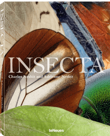 Charles & Adrienne Nesbit. Insecta