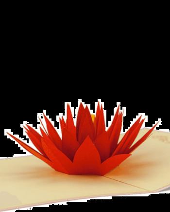 Kartka 3D. Lilia wodna